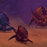 Three_bugs